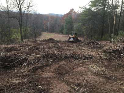 Land Clearing in Polk county