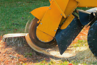 Stump Grinding, Salem OR